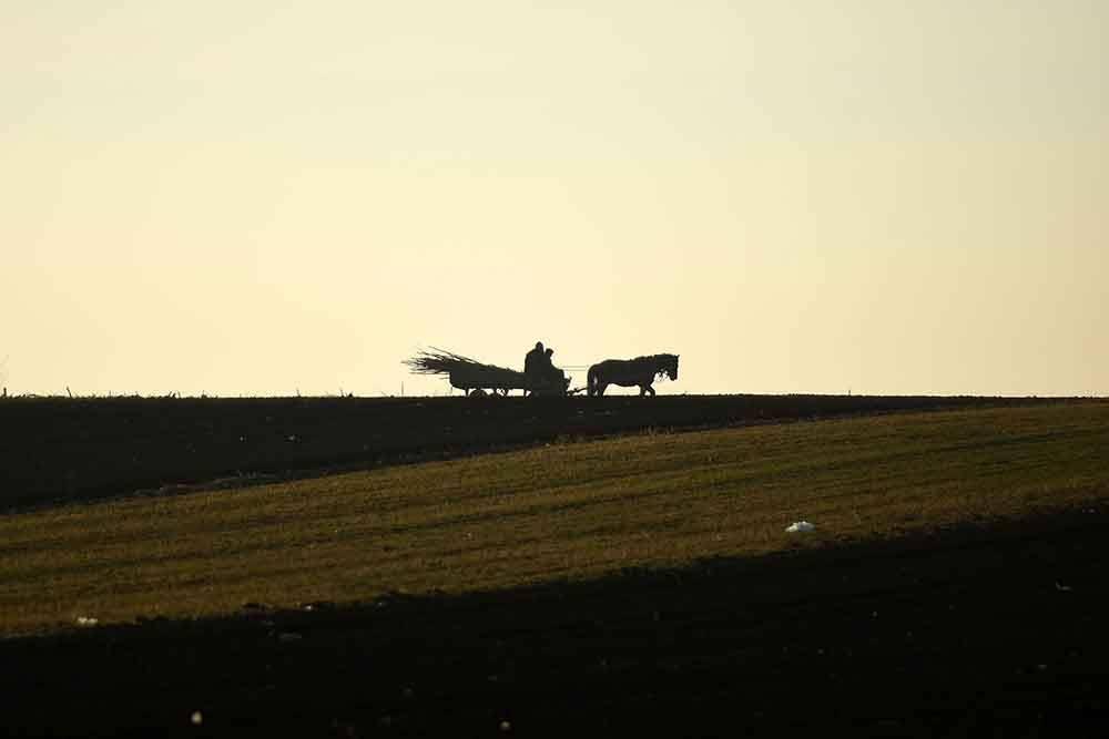 poljoprivreda-foto-DGojic-1